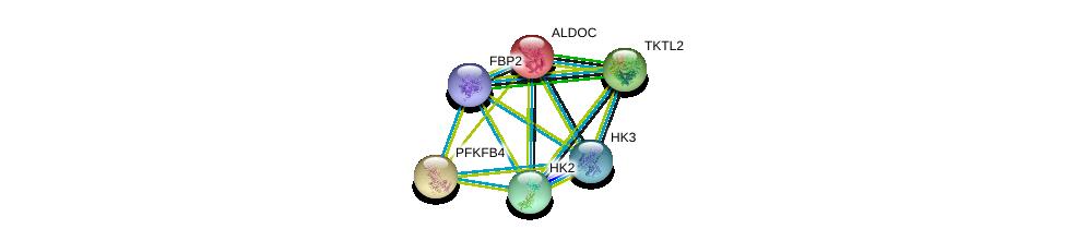 http://string-db.org/version_10/api/image/networkList?limit=0&targetmode=proteins&caller_identity=gene_cards&network_flavor=evidence&identifiers=9606.ENSP00000364486%0d%0a9606.ENSP00000232375%0d%0a9606.ENSP00000280605%0d%0a9606.ENSP00000290573%0d%0a9606.ENSP00000292432%0d%0a9606.ENSP00000226253%0d%0a