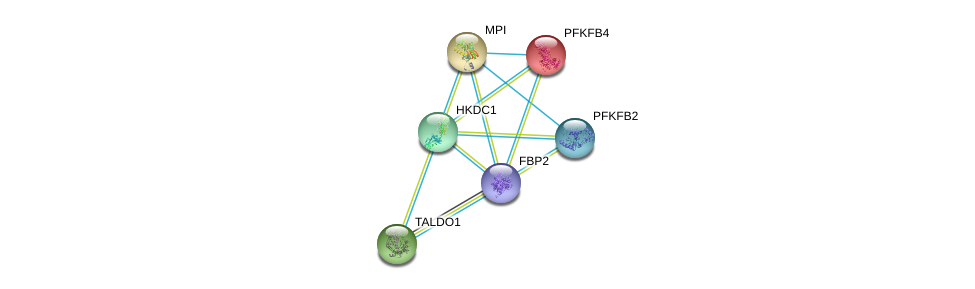 http://string-db.org/version_10/api/image/networkList?limit=0&targetmode=proteins&caller_identity=gene_cards&network_flavor=evidence&identifiers=9606.ENSP00000364486%0d%0a9606.ENSP00000321259%0d%0a9606.ENSP00000356047%0d%0a9606.ENSP00000232375%0d%0a9606.ENSP00000318318%0d%0a9606.ENSP00000346643%0d%0a