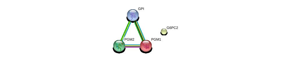 http://string-db.org/version_10/api/image/networkList?limit=0&targetmode=proteins&caller_identity=gene_cards&network_flavor=evidence&identifiers=9606.ENSP00000364512%0d%0a9606.ENSP00000360124%0d%0a9606.ENSP00000371393%0d%0a9606.ENSP00000405573%0d%0a