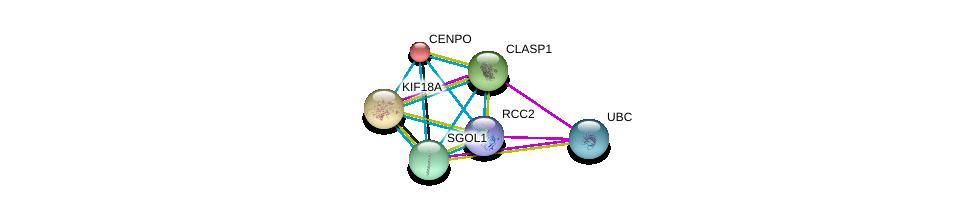 http://string-db.org/version_10/api/image/networkList?limit=0&targetmode=proteins&caller_identity=gene_cards&network_flavor=evidence&identifiers=9606.ENSP00000364582%0d%0a9606.ENSP00000344818%0d%0a9606.ENSP00000260662%0d%0a9606.ENSP00000263181%0d%0a9606.ENSP00000263710%0d%0a9606.ENSP00000263753%0d%0a