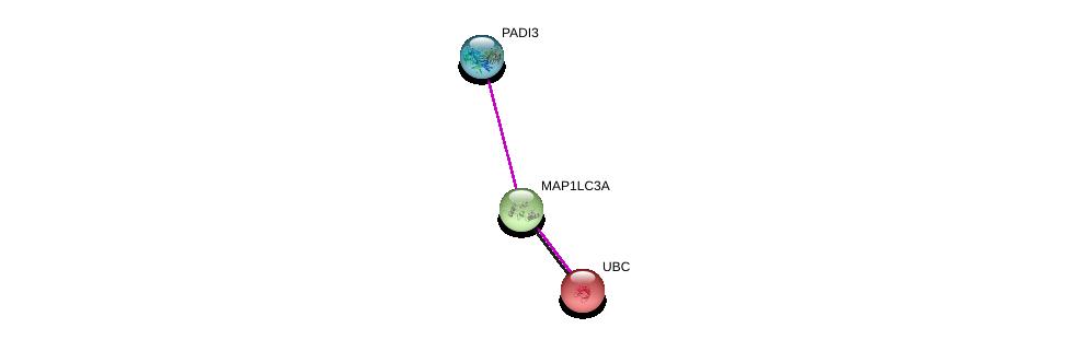 http://string-db.org/version_10/api/image/networkList?limit=0&targetmode=proteins&caller_identity=gene_cards&network_flavor=evidence&identifiers=9606.ENSP00000364609%0d%0a9606.ENSP00000363970%0d%0a9606.ENSP00000344818%0d%0a
