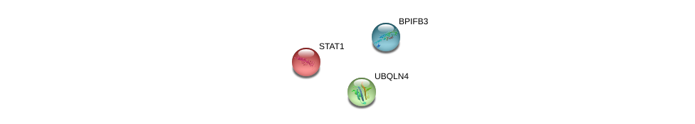 http://string-db.org/version_10/api/image/networkList?limit=0&targetmode=proteins&caller_identity=gene_cards&network_flavor=evidence&identifiers=9606.ENSP00000364643%0d%0a9606.ENSP00000354394%0d%0a9606.ENSP00000357292%0d%0a