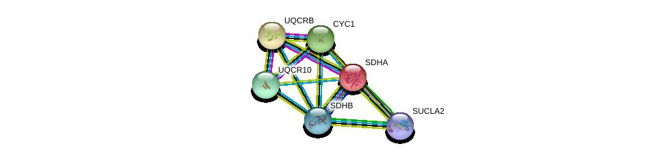http://string-db.org/version_10/api/image/networkList?limit=0&targetmode=proteins&caller_identity=gene_cards&network_flavor=evidence&identifiers=9606.ENSP00000364649%0d%0a9606.ENSP00000264932%0d%0a9606.ENSP00000332887%0d%0a9606.ENSP00000367923%0d%0a9606.ENSP00000317159%0d%0a9606.ENSP00000287022%0d%0a