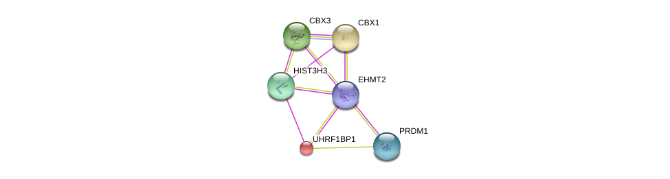 http://string-db.org/version_10/api/image/networkList?limit=0&targetmode=proteins&caller_identity=gene_cards&network_flavor=evidence&identifiers=9606.ENSP00000364687%0d%0a9606.ENSP00000336687%0d%0a9606.ENSP00000192788%0d%0a9606.ENSP00000225603%0d%0a9606.ENSP00000358092%0d%0a9606.ENSP00000355657%0d%0a