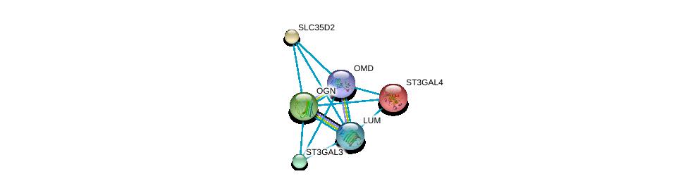 http://string-db.org/version_10/api/image/networkList?limit=0&targetmode=proteins&caller_identity=gene_cards&network_flavor=evidence&identifiers=9606.ENSP00000364700%0d%0a9606.ENSP00000227495%0d%0a9606.ENSP00000253270%0d%0a9606.ENSP00000262551%0d%0a9606.ENSP00000262915%0d%0a9606.ENSP00000266718%0d%0a