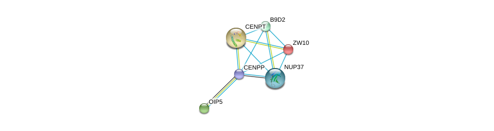 http://string-db.org/version_10/api/image/networkList?limit=0&targetmode=proteins&caller_identity=gene_cards&network_flavor=evidence&identifiers=9606.ENSP00000364737%0d%0a9606.ENSP00000200135%0d%0a9606.ENSP00000219172%0d%0a9606.ENSP00000220514%0d%0a9606.ENSP00000243578%0d%0a9606.ENSP00000251074%0d%0a