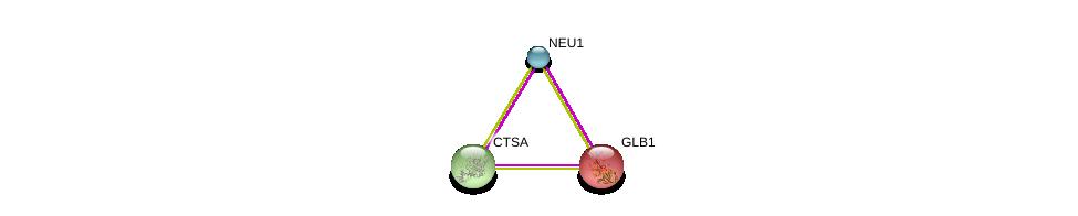 http://string-db.org/version_10/api/image/networkList?limit=0&targetmode=proteins&caller_identity=gene_cards&network_flavor=evidence&identifiers=9606.ENSP00000364782%0d%0a9606.ENSP00000361562%0d%0a9606.ENSP00000306920%0d%0a