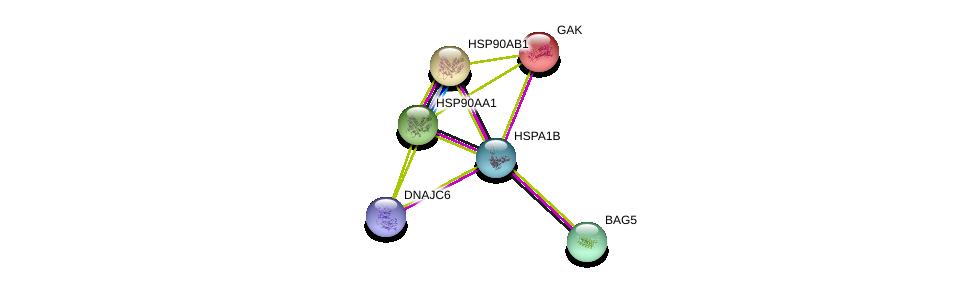 http://string-db.org/version_10/api/image/networkList?limit=0&targetmode=proteins&caller_identity=gene_cards&network_flavor=evidence&identifiers=9606.ENSP00000364801%0d%0a9606.ENSP00000314499%0d%0a9606.ENSP00000378735%0d%0a9606.ENSP00000338814%0d%0a9606.ENSP00000335153%0d%0a9606.ENSP00000325875%0d%0a