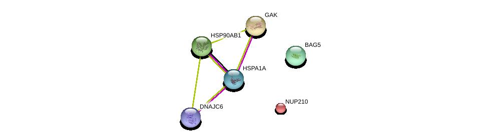 http://string-db.org/version_10/api/image/networkList?limit=0&targetmode=proteins&caller_identity=gene_cards&network_flavor=evidence&identifiers=9606.ENSP00000364802%0d%0a9606.ENSP00000325875%0d%0a9606.ENSP00000378735%0d%0a9606.ENSP00000314499%0d%0a9606.ENSP00000338814%0d%0a9606.ENSP00000254508%0d%0a