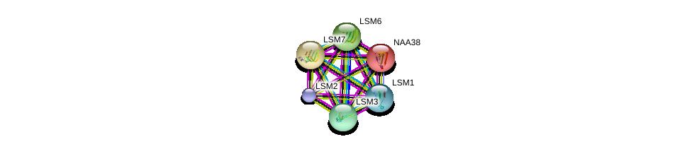 http://string-db.org/version_10/api/image/networkList?limit=0&targetmode=proteins&caller_identity=gene_cards&network_flavor=evidence&identifiers=9606.ENSP00000364813%0d%0a9606.ENSP00000252622%0d%0a9606.ENSP00000249299%0d%0a9606.ENSP00000296581%0d%0a9606.ENSP00000302160%0d%0a9606.ENSP00000310596%0d%0a