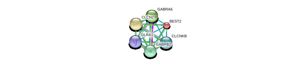 http://string-db.org/version_10/api/image/networkList?limit=0&targetmode=proteins&caller_identity=gene_cards&network_flavor=evidence&identifiers=9606.ENSP00000364831%0d%0a9606.ENSP00000274547%0d%0a9606.ENSP00000274545%0d%0a9606.ENSP00000042931%0d%0a9606.ENSP00000265593%0d%0a9606.ENSP00000411593%0d%0a