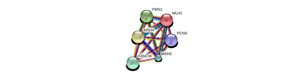 http://string-db.org/version_10/api/image/networkList?limit=0&targetmode=proteins&caller_identity=gene_cards&network_flavor=evidence&identifiers=9606.ENSP00000364855%0d%0a9606.ENSP00000263187%0d%0a9606.ENSP00000267430%0d%0a9606.ENSP00000368438%0d%0a9606.ENSP00000231790%0d%0a9606.ENSP00000265849%0d%0a