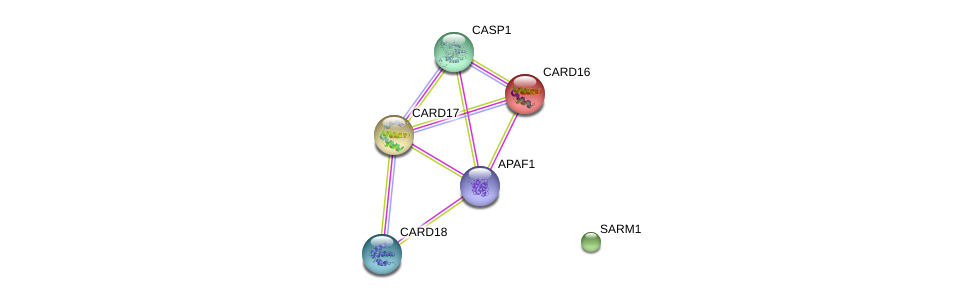 http://string-db.org/version_10/api/image/networkList?limit=0&targetmode=proteins&caller_identity=gene_cards&network_flavor=evidence&identifiers=9606.ENSP00000364859%0d%0a9606.ENSP00000436691%0d%0a9606.ENSP00000364858%0d%0a9606.ENSP00000410076%0d%0a9606.ENSP00000448165%0d%0a9606.ENSP00000406738%0d%0a