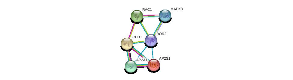 http://string-db.org/version_10/api/image/networkList?limit=0&targetmode=proteins&caller_identity=gene_cards&network_flavor=evidence&identifiers=9606.ENSP00000364860%0d%0a9606.ENSP00000269122%0d%0a9606.ENSP00000348461%0d%0a9606.ENSP00000263270%0d%0a9606.ENSP00000351926%0d%0a9606.ENSP00000353483%0d%0a