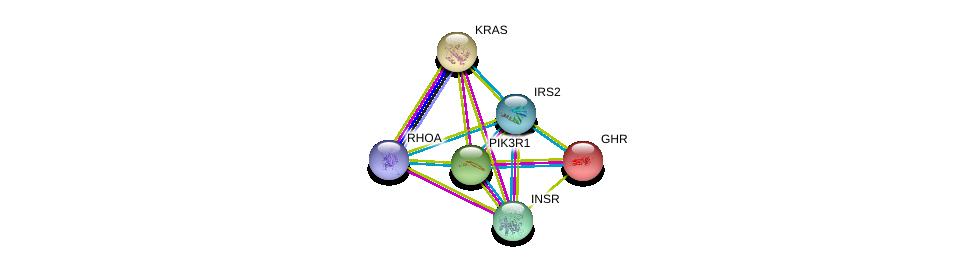 http://string-db.org/version_10/api/image/networkList?limit=0&targetmode=proteins&caller_identity=gene_cards&network_flavor=evidence&identifiers=9606.ENSP00000365016%0d%0a9606.ENSP00000274335%0d%0a9606.ENSP00000303830%0d%0a9606.ENSP00000230882%0d%0a9606.ENSP00000256078%0d%0a9606.ENSP00000400175%0d%0a