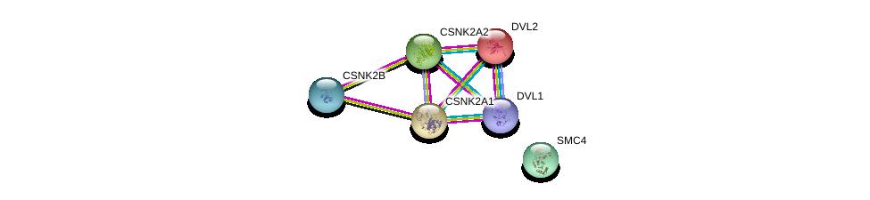 http://string-db.org/version_10/api/image/networkList?limit=0&targetmode=proteins&caller_identity=gene_cards&network_flavor=evidence&identifiers=9606.ENSP00000365025%0d%0a9606.ENSP00000217244%0d%0a9606.ENSP00000262506%0d%0a9606.ENSP00000341382%0d%0a9606.ENSP00000005340%0d%0a9606.ENSP00000368169%0d%0a