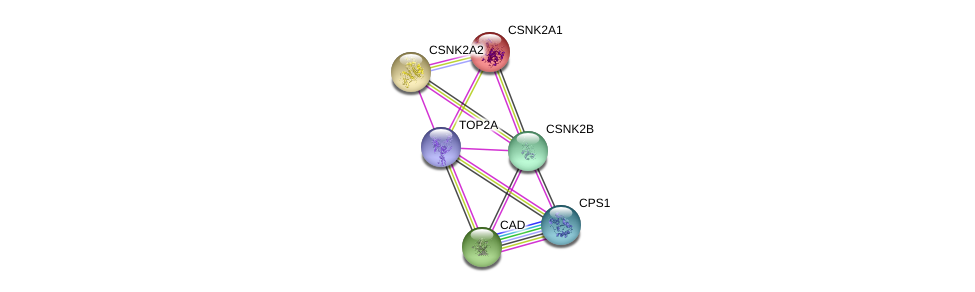 http://string-db.org/version_10/api/image/networkList?limit=0&targetmode=proteins&caller_identity=gene_cards&network_flavor=evidence&identifiers=9606.ENSP00000365025%0d%0a9606.ENSP00000264705%0d%0a9606.ENSP00000402608%0d%0a9606.ENSP00000217244%0d%0a9606.ENSP00000262506%0d%0a9606.ENSP00000411532%0d%0a