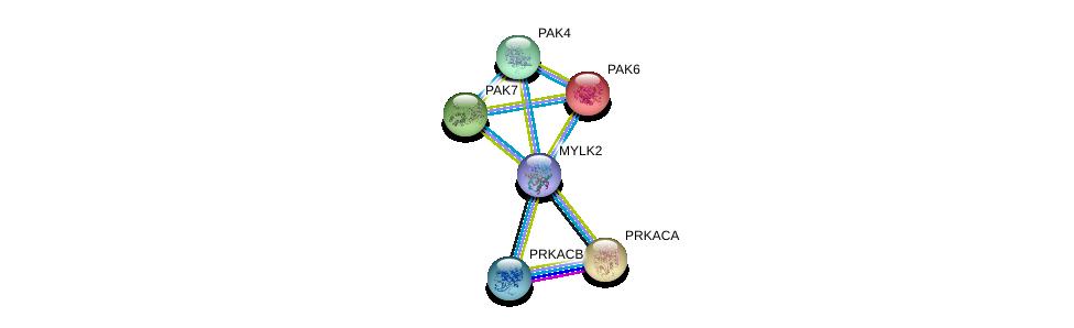 http://string-db.org/version_10/api/image/networkList?limit=0&targetmode=proteins&caller_identity=gene_cards&network_flavor=evidence&identifiers=9606.ENSP00000365152%0d%0a9606.ENSP00000260404%0d%0a9606.ENSP00000309591%0d%0a9606.ENSP00000322957%0d%0a9606.ENSP00000351049%0d%0a9606.ENSP00000359719%0d%0a
