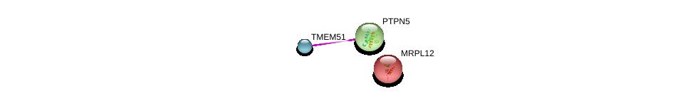 http://string-db.org/version_10/api/image/networkList?limit=0&targetmode=proteins&caller_identity=gene_cards&network_flavor=evidence&identifiers=9606.ENSP00000365176%0d%0a9606.ENSP00000351342%0d%0a9606.ENSP00000333837%0d%0a