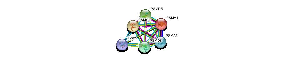 http://string-db.org/version_10/api/image/networkList?limit=0&targetmode=proteins&caller_identity=gene_cards&network_flavor=evidence&identifiers=9606.ENSP00000365233%0d%0a9606.ENSP00000044462%0d%0a9606.ENSP00000157812%0d%0a9606.ENSP00000210313%0d%0a9606.ENSP00000215071%0d%0a9606.ENSP00000216455%0d%0a