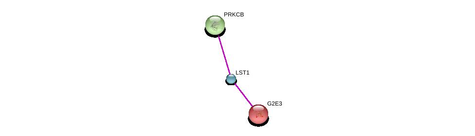http://string-db.org/version_10/api/image/networkList?limit=0&targetmode=proteins&caller_identity=gene_cards&network_flavor=evidence&identifiers=9606.ENSP00000365261%0d%0a9606.ENSP00000206595%0d%0a9606.ENSP00000305355%0d%0a