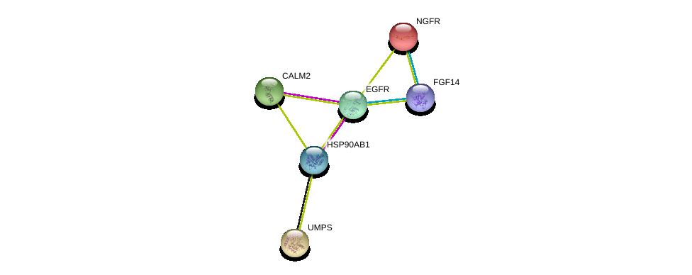 http://string-db.org/version_10/api/image/networkList?limit=0&targetmode=proteins&caller_identity=gene_cards&network_flavor=evidence&identifiers=9606.ENSP00000365301%0d%0a9606.ENSP00000272298%0d%0a9606.ENSP00000172229%0d%0a9606.ENSP00000275493%0d%0a9606.ENSP00000232607%0d%0a9606.ENSP00000325875%0d%0a
