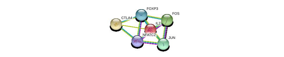 http://string-db.org/version_10/api/image/networkList?limit=0&targetmode=proteins&caller_identity=gene_cards&network_flavor=evidence&identifiers=9606.ENSP00000365380%0d%0a9606.ENSP00000379330%0d%0a9606.ENSP00000226730%0d%0a9606.ENSP00000303939%0d%0a9606.ENSP00000306245%0d%0a9606.ENSP00000360266%0d%0a