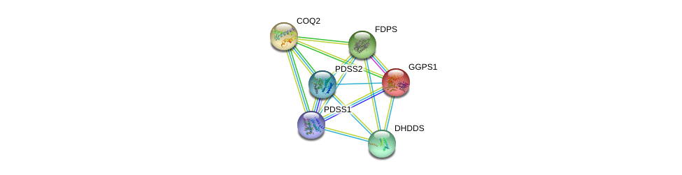 http://string-db.org/version_10/api/image/networkList?limit=0&targetmode=proteins&caller_identity=gene_cards&network_flavor=evidence&identifiers=9606.ENSP00000365388%0d%0a9606.ENSP00000282841%0d%0a9606.ENSP00000310873%0d%0a9606.ENSP00000349078%0d%0a9606.ENSP00000353104%0d%0a9606.ENSP00000358033%0d%0a