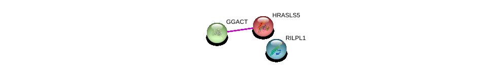 http://string-db.org/version_10/api/image/networkList?limit=0&targetmode=proteins&caller_identity=gene_cards&network_flavor=evidence&identifiers=9606.ENSP00000365426%0d%0a9606.ENSP00000366070%0d%0a9606.ENSP00000301790%0d%0a