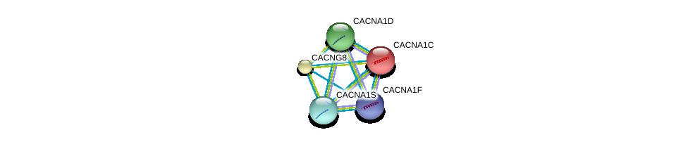 http://string-db.org/version_10/api/image/networkList?limit=0&targetmode=proteins&caller_identity=gene_cards&network_flavor=evidence&identifiers=9606.ENSP00000365441%0d%0a9606.ENSP00000270458%0d%0a9606.ENSP00000270458%0d%0a9606.ENSP00000355192%0d%0a9606.ENSP00000266376%0d%0a9606.ENSP00000288139%0d%0a