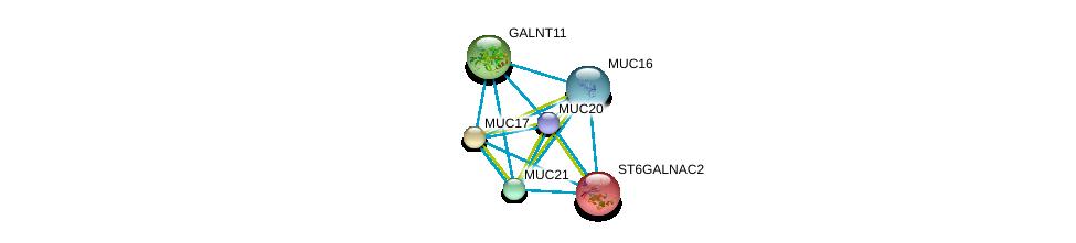 http://string-db.org/version_10/api/image/networkList?limit=0&targetmode=proteins&caller_identity=gene_cards&network_flavor=evidence&identifiers=9606.ENSP00000365473%0d%0a9606.ENSP00000302716%0d%0a9606.ENSP00000396774%0d%0a9606.ENSP00000381008%0d%0a9606.ENSP00000315835%0d%0a9606.ENSP00000225276%0d%0a