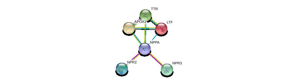 http://string-db.org/version_10/api/image/networkList?limit=0&targetmode=proteins&caller_identity=gene_cards&network_flavor=evidence&identifiers=9606.ENSP00000365663%0d%0a9606.ENSP00000265074%0d%0a9606.ENSP00000341083%0d%0a9606.ENSP00000231751%0d%0a9606.ENSP00000236850%0d%0a9606.ENSP00000237014%0d%0a
