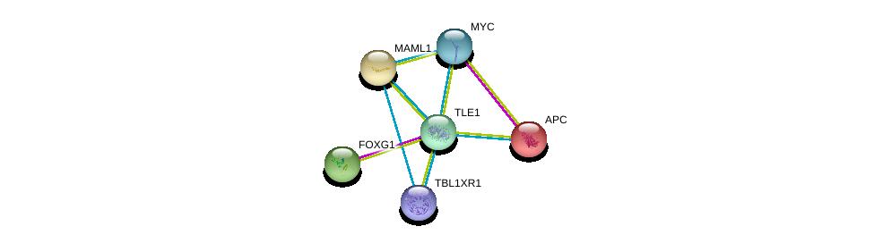 http://string-db.org/version_10/api/image/networkList?limit=0&targetmode=proteins&caller_identity=gene_cards&network_flavor=evidence&identifiers=9606.ENSP00000365682%0d%0a9606.ENSP00000339004%0d%0a9606.ENSP00000367207%0d%0a9606.ENSP00000292599%0d%0a9606.ENSP00000405574%0d%0a9606.ENSP00000257430%0d%0a