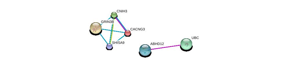 http://string-db.org/version_10/api/image/networkList?limit=0&targetmode=proteins&caller_identity=gene_cards&network_flavor=evidence&identifiers=9606.ENSP00000365725%0d%0a9606.ENSP00000344818%0d%0a9606.ENSP00000005284%0d%0a9606.ENSP00000454014%0d%0a9606.ENSP00000234389%0d%0a9606.ENSP00000272133%0d%0a