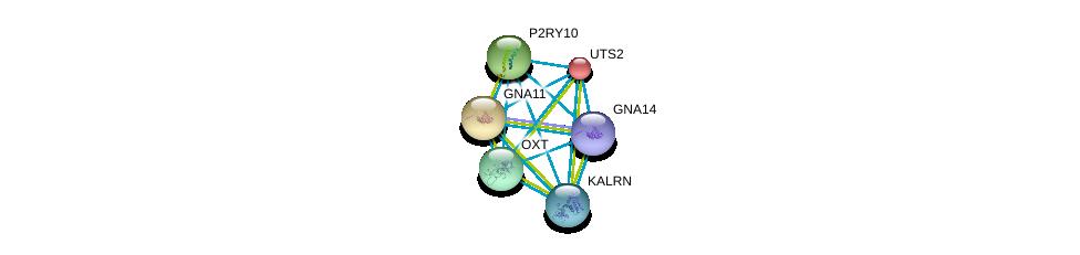 http://string-db.org/version_10/api/image/networkList?limit=0&targetmode=proteins&caller_identity=gene_cards&network_flavor=evidence&identifiers=9606.ENSP00000365807%0d%0a9606.ENSP00000054668%0d%0a9606.ENSP00000078429%0d%0a9606.ENSP00000171757%0d%0a9606.ENSP00000217386%0d%0a9606.ENSP00000240874%0d%0a