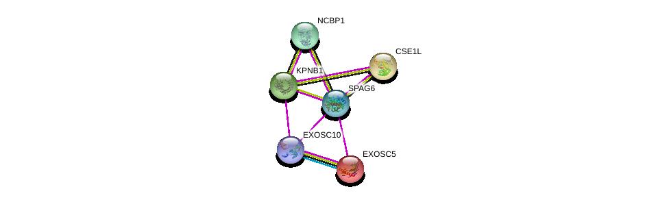 http://string-db.org/version_10/api/image/networkList?limit=0&targetmode=proteins&caller_identity=gene_cards&network_flavor=evidence&identifiers=9606.ENSP00000365811%0d%0a9606.ENSP00000290158%0d%0a9606.ENSP00000366135%0d%0a9606.ENSP00000364289%0d%0a9606.ENSP00000262982%0d%0a9606.ENSP00000221233%0d%0a