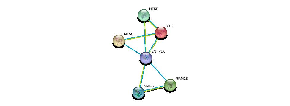 http://string-db.org/version_10/api/image/networkList?limit=0&targetmode=proteins&caller_identity=gene_cards&network_flavor=evidence&identifiers=9606.ENSP00000365840%0d%0a9606.ENSP00000236959%0d%0a9606.ENSP00000257770%0d%0a9606.ENSP00000251810%0d%0a9606.ENSP00000245552%0d%0a9606.ENSP00000265191%0d%0a