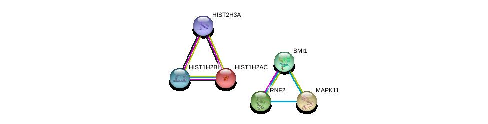 http://string-db.org/version_10/api/image/networkList?limit=0&targetmode=proteins&caller_identity=gene_cards&network_flavor=evidence&identifiers=9606.ENSP00000365851%0d%0a9606.ENSP00000356480%0d%0a9606.ENSP00000321389%0d%0a9606.ENSP00000333685%0d%0a9606.ENSP00000366618%0d%0a9606.ENSP00000385479%0d%0a