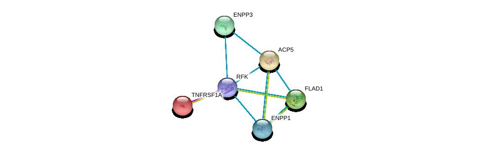 http://string-db.org/version_10/api/image/networkList?limit=0&targetmode=proteins&caller_identity=gene_cards&network_flavor=evidence&identifiers=9606.ENSP00000365926%0d%0a9606.ENSP00000218758%0d%0a9606.ENSP00000354238%0d%0a9606.ENSP00000350265%0d%0a9606.ENSP00000292180%0d%0a9606.ENSP00000162749%0d%0a
