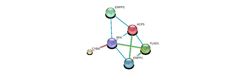 http://string-db.org/version_10/api/image/networkList?limit=0&targetmode=proteins&caller_identity=gene_cards&network_flavor=evidence&identifiers=9606.ENSP00000365926%0d%0a9606.ENSP00000354238%0d%0a9606.ENSP00000218758%0d%0a9606.ENSP00000292180%0d%0a9606.ENSP00000350265%0d%0a9606.ENSP00000261623%0d%0a