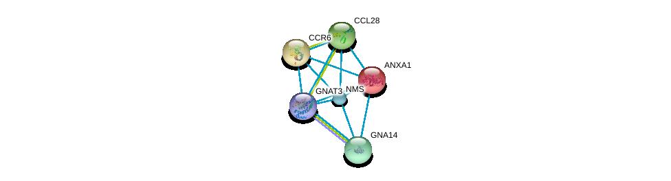 http://string-db.org/version_10/api/image/networkList?limit=0&targetmode=proteins&caller_identity=gene_cards&network_flavor=evidence&identifiers=9606.ENSP00000366061%0d%0a9606.ENSP00000339393%0d%0a9606.ENSP00000365807%0d%0a9606.ENSP00000354416%0d%0a9606.ENSP00000381339%0d%0a9606.ENSP00000257497%0d%0a
