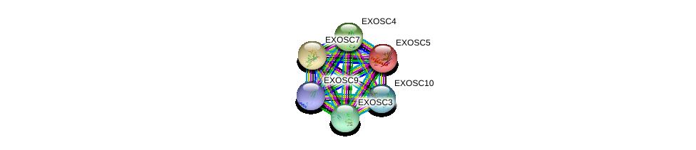 http://string-db.org/version_10/api/image/networkList?limit=0&targetmode=proteins&caller_identity=gene_cards&network_flavor=evidence&identifiers=9606.ENSP00000366135%0d%0a9606.ENSP00000265564%0d%0a9606.ENSP00000315476%0d%0a9606.ENSP00000323046%0d%0a9606.ENSP00000221233%0d%0a9606.ENSP00000368984%0d%0a