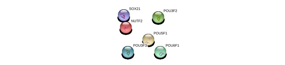 http://string-db.org/version_10/api/image/networkList?limit=0&targetmode=proteins&caller_identity=gene_cards&network_flavor=evidence&identifiers=9606.ENSP00000366144%0d%0a9606.ENSP00000219169%0d%0a9606.ENSP00000259915%0d%0a9606.ENSP00000355001%0d%0a9606.ENSP00000330190%0d%0a9606.ENSP00000329170%0d%0a