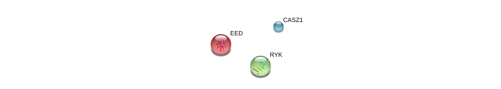 http://string-db.org/version_10/api/image/networkList?limit=0&targetmode=proteins&caller_identity=gene_cards&network_flavor=evidence&identifiers=9606.ENSP00000366221%0d%0a9606.ENSP00000263360%0d%0a9606.ENSP00000263360%0d%0a9606.ENSP00000296084%0d%0a