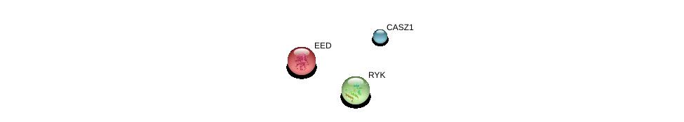 http://string-db.org/version_10/api/image/networkList?limit=0&targetmode=proteins&caller_identity=gene_cards&network_flavor=evidence&identifiers=9606.ENSP00000366221%0d%0a9606.ENSP00000263360%0d%0a9606.ENSP00000296084%0d%0a