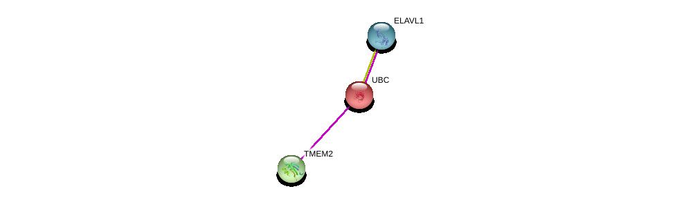 http://string-db.org/version_10/api/image/networkList?limit=0&targetmode=proteins&caller_identity=gene_cards&network_flavor=evidence&identifiers=9606.ENSP00000366243%0d%0a9606.ENSP00000344818%0d%0a9606.ENSP00000385269%0d%0a