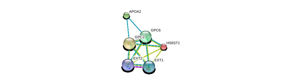 http://string-db.org/version_10/api/image/networkList?limit=0&targetmode=proteins&caller_identity=gene_cards&network_flavor=evidence&identifiers=9606.ENSP00000366246%0d%0a9606.ENSP00000292377%0d%0a9606.ENSP00000259241%0d%0a9606.ENSP00000379032%0d%0a9606.ENSP00000367446%0d%0a9606.ENSP00000356969%0d%0a