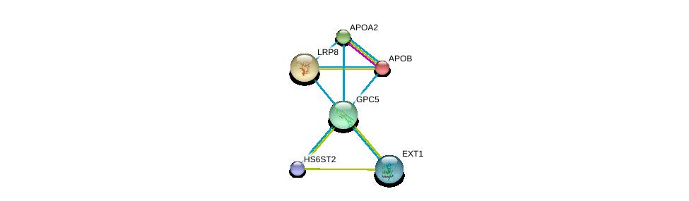 http://string-db.org/version_10/api/image/networkList?limit=0&targetmode=proteins&caller_identity=gene_cards&network_flavor=evidence&identifiers=9606.ENSP00000366267%0d%0a9606.ENSP00000356969%0d%0a9606.ENSP00000367446%0d%0a9606.ENSP00000303634%0d%0a9606.ENSP00000429473%0d%0a9606.ENSP00000233242%0d%0a