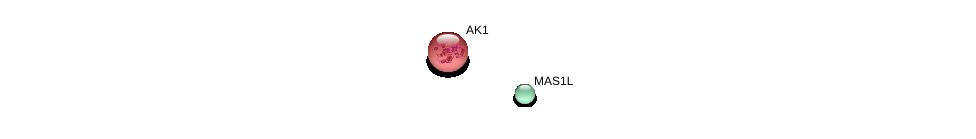 http://string-db.org/version_10/api/image/networkList?limit=0&targetmode=proteins&caller_identity=gene_cards&network_flavor=evidence&identifiers=9606.ENSP00000366331%0d%0a9606.ENSP00000362249%0d%0a