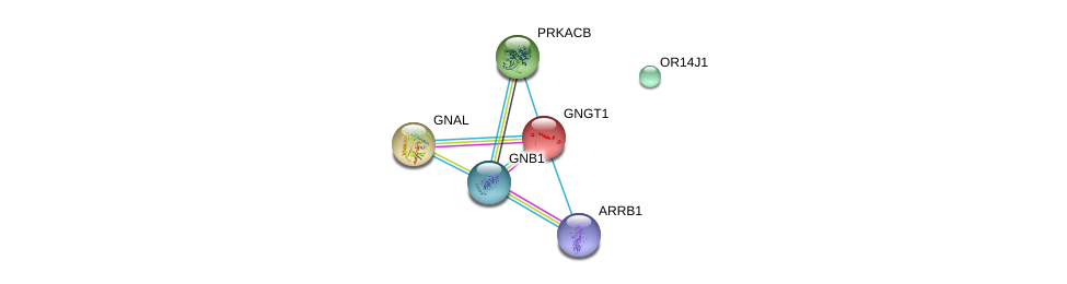 http://string-db.org/version_10/api/image/networkList?limit=0&targetmode=proteins&caller_identity=gene_cards&network_flavor=evidence&identifiers=9606.ENSP00000366365%0d%0a9606.ENSP00000334051%0d%0a9606.ENSP00000367869%0d%0a9606.ENSP00000248572%0d%0a9606.ENSP00000359719%0d%0a9606.ENSP00000409581%0d%0a
